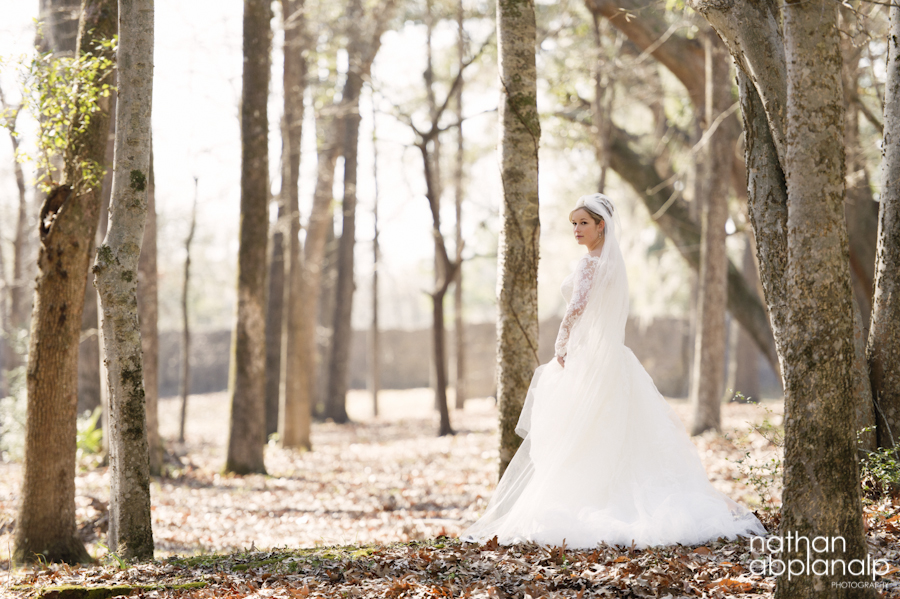 A winter bridal portrait in charleston sc
