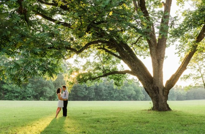 Man and woman embracing in field by a large tree in Charlotte NC