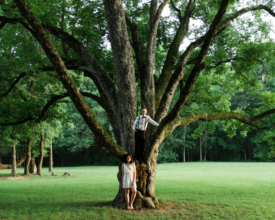 Man standing in large tree in charlotte nc