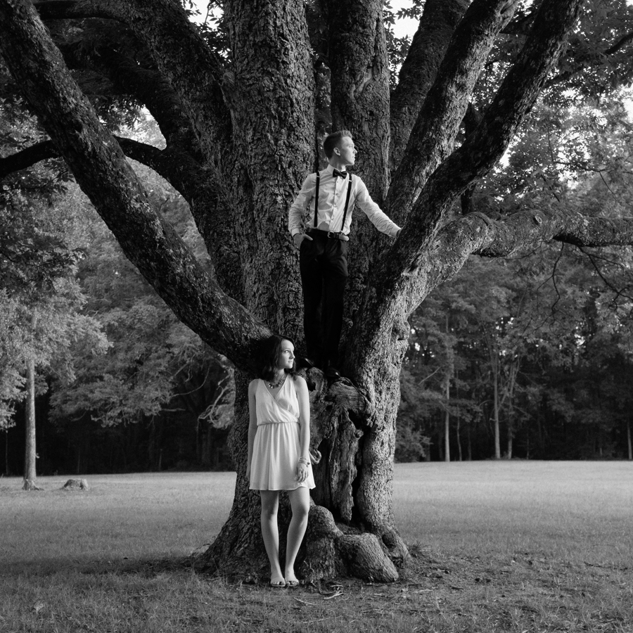 man and woman standing in large tree in charlotte nc