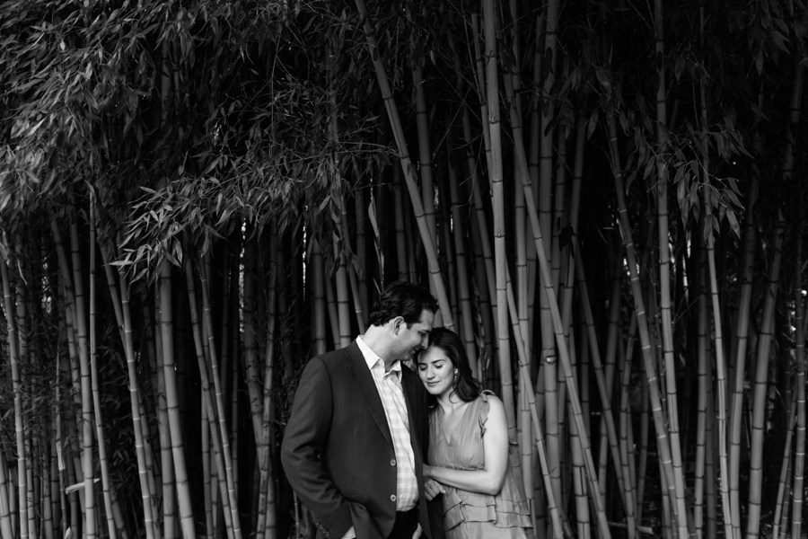 Couple embracing in the bamboo forest at Wing Haven Gardens in Charlotte NC