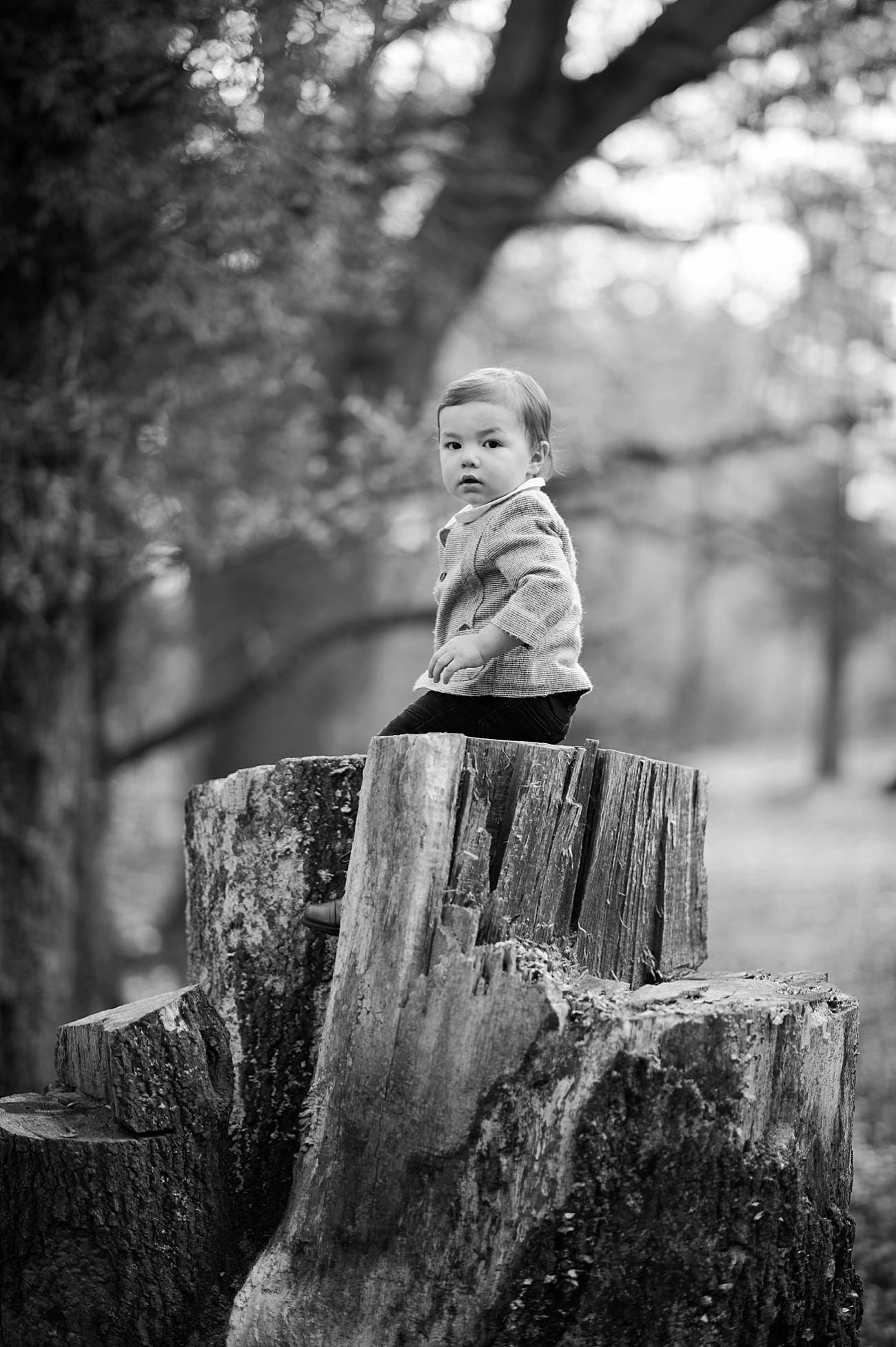 Little boy sits on a stump in the forest at Westminster Park, Rock Hill, SC