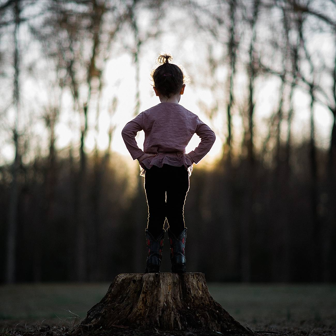Toddler standing on stump looking at sunset at Westminster Park, Rock Hill, SC
